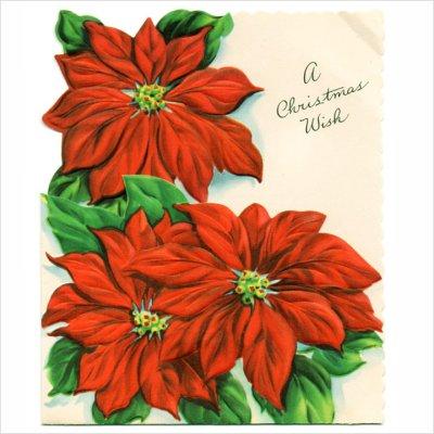 画像1: USAヴィンテージ1950年代紙ものクリスマスカード|ポインセチア・christmas wishアンティークポストカード