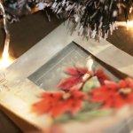 画像10: USAヴィンテージ1950年代紙ものクリスマスカード|淡い3つのポインセチア・アンティークカード (10)